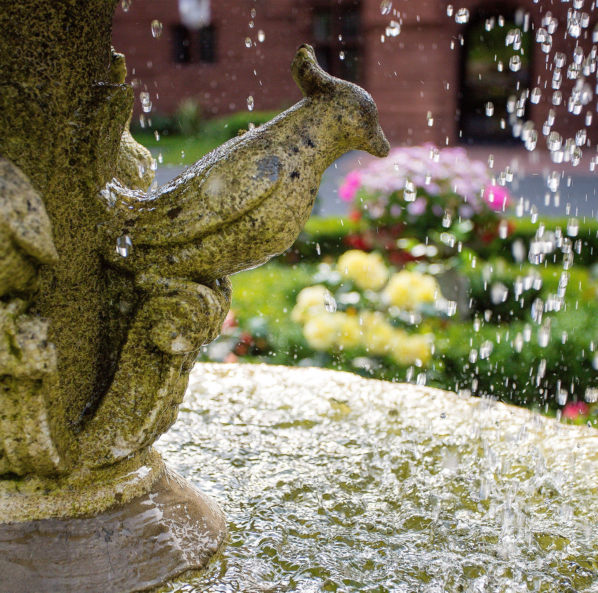 Ornate stone bird fountain feature and water falling into fountain basin at Abbey House