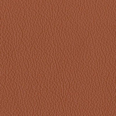 sienna earth original leather album colour swatch