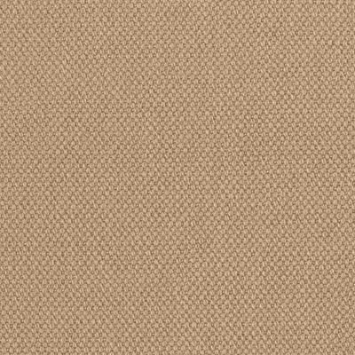 Sand Cotton Fabric Colour Swatch