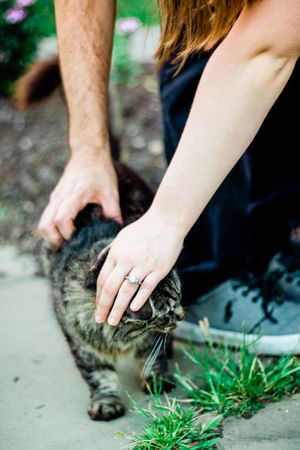 A couple petting a farm cat and showing off their ring during an engagement proposal at Round Hill Park Elizabeth PA
