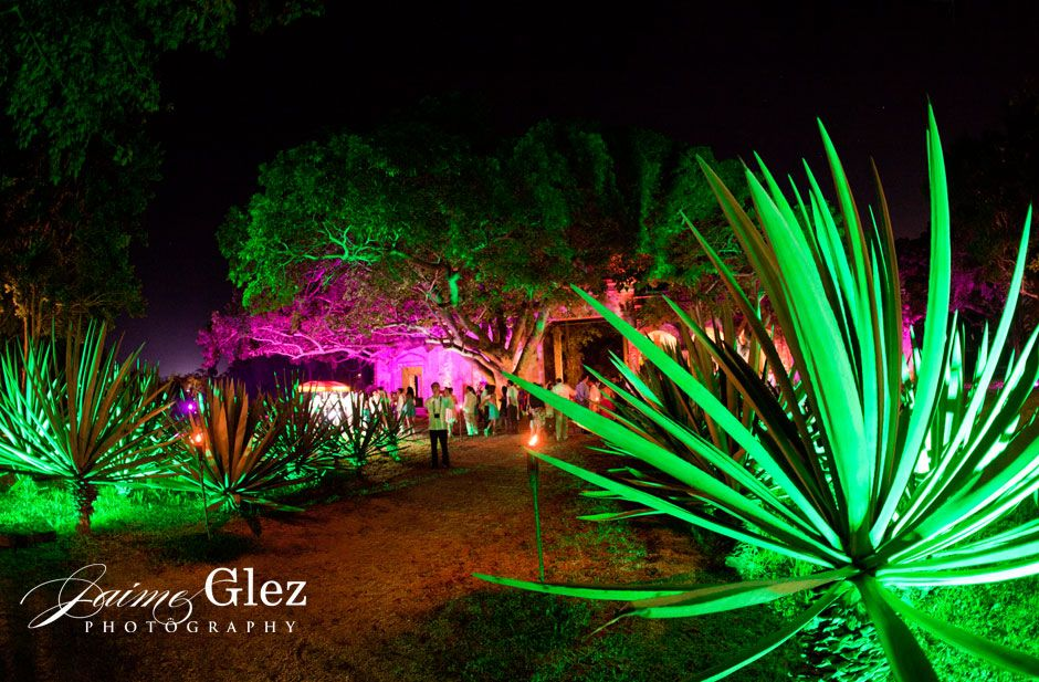 yucatan wedding planner 19