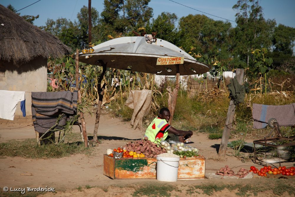 A man sells vegetables under a roof made out of an old satelite dish in Domboshawa, Harare, Zimbabwe