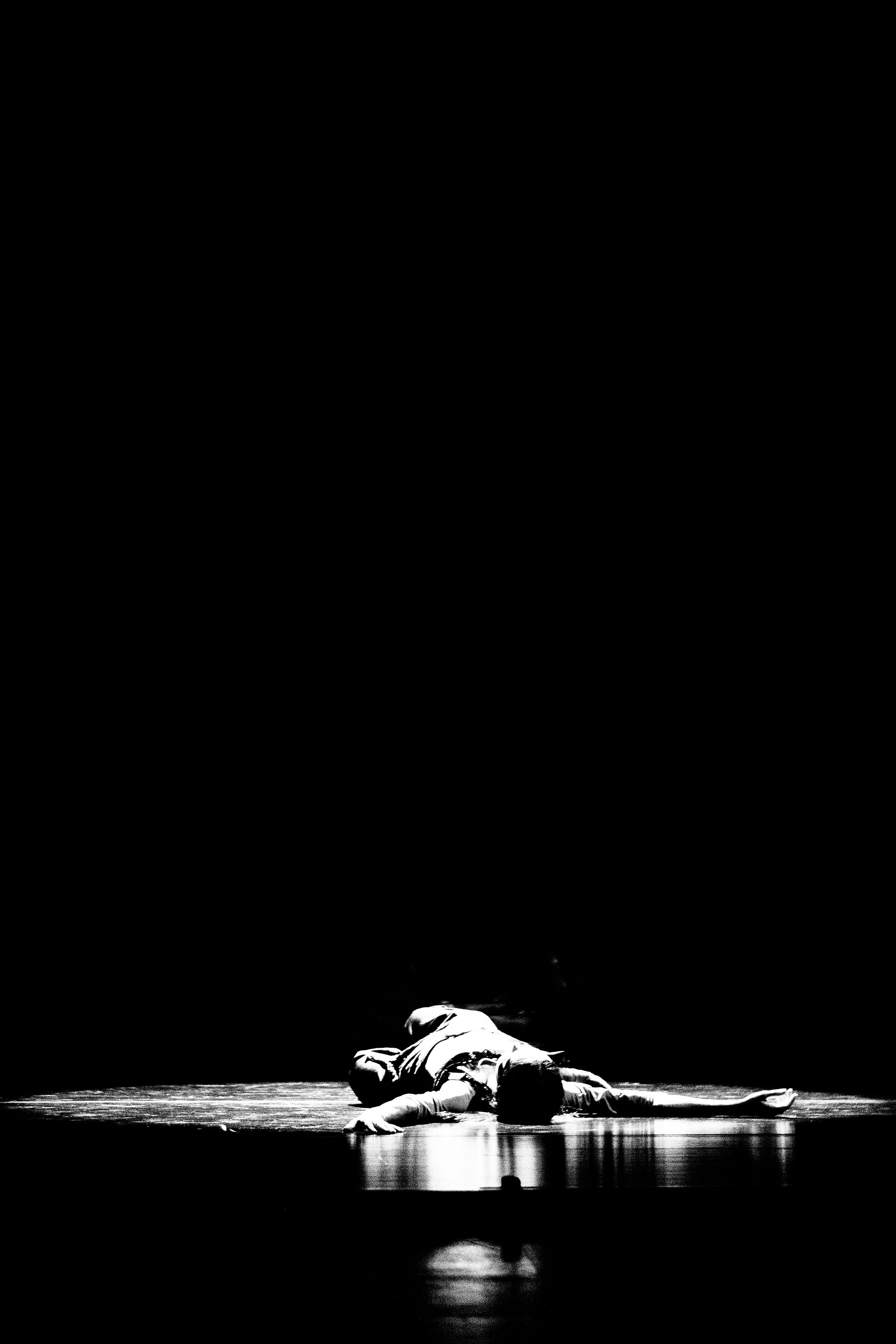 diana vishneva chicago sleeping beauty dreams