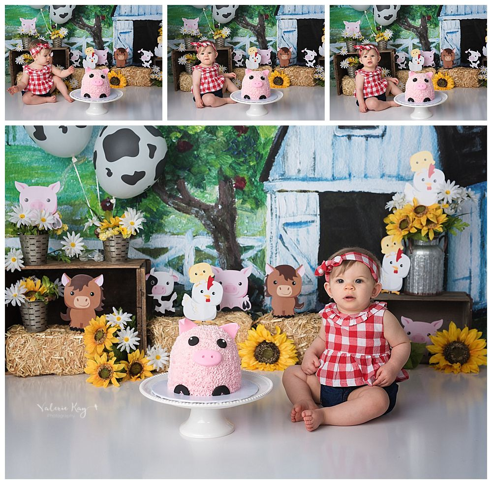 austin newborn photography cake smash cute farm barnyard one year session.