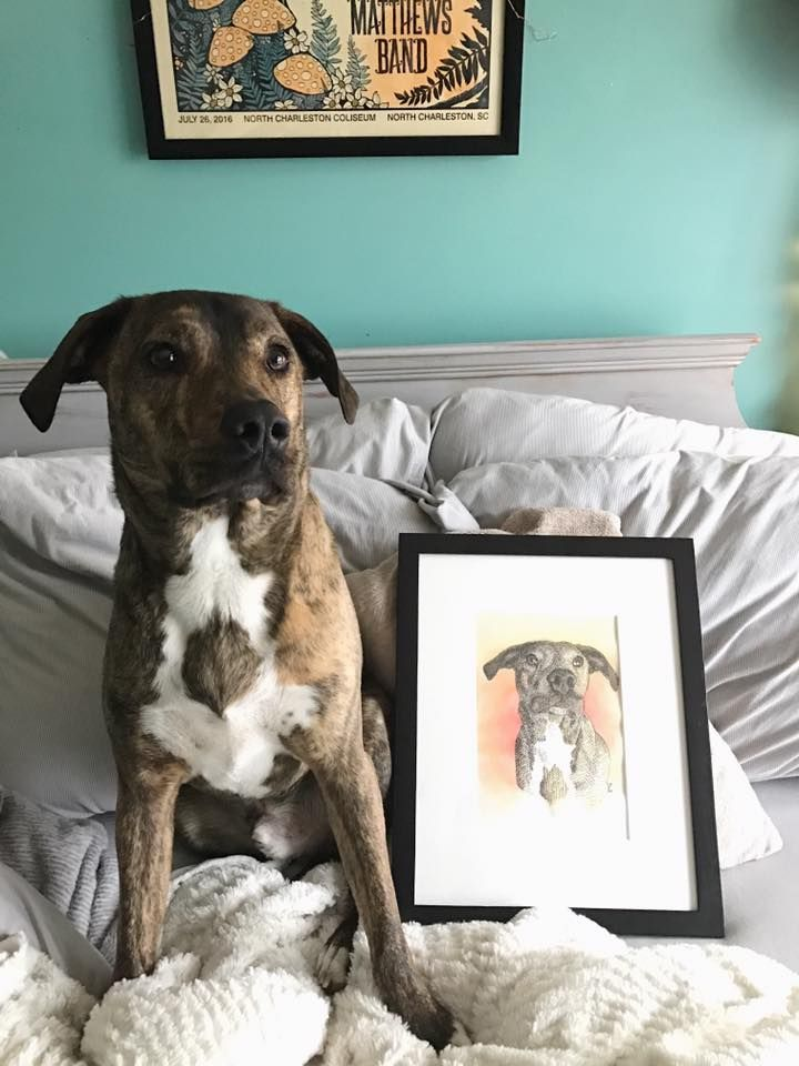 kayley's puppy with a drawing of themself