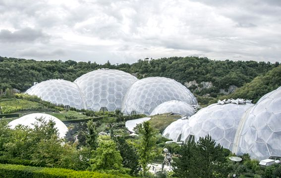 eden project cornwall is on Faye Amare's wedding venue bucket list