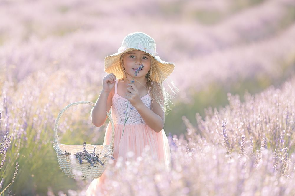 family photography girl standing in lavender field