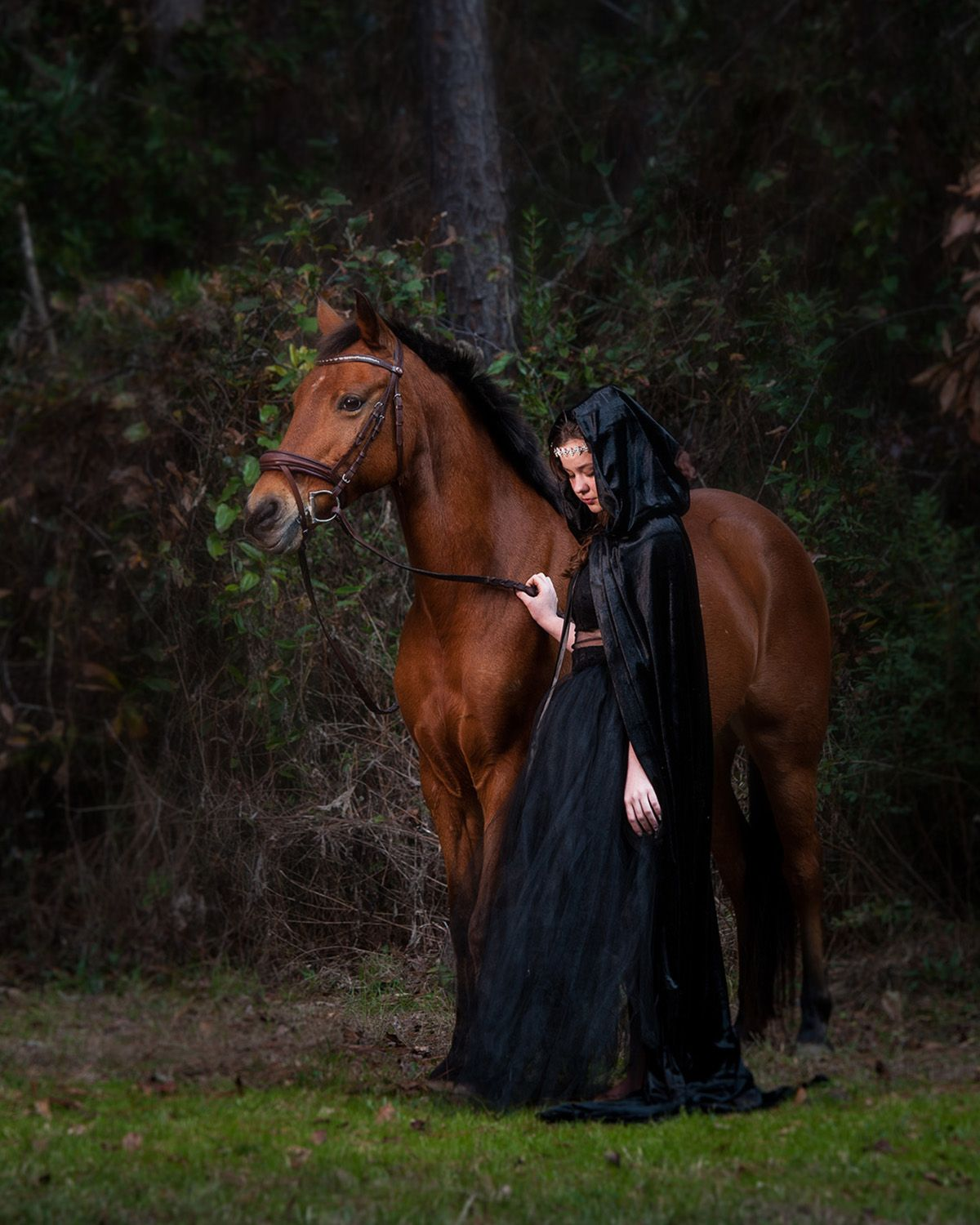 Equestrian Pony & young lady in black