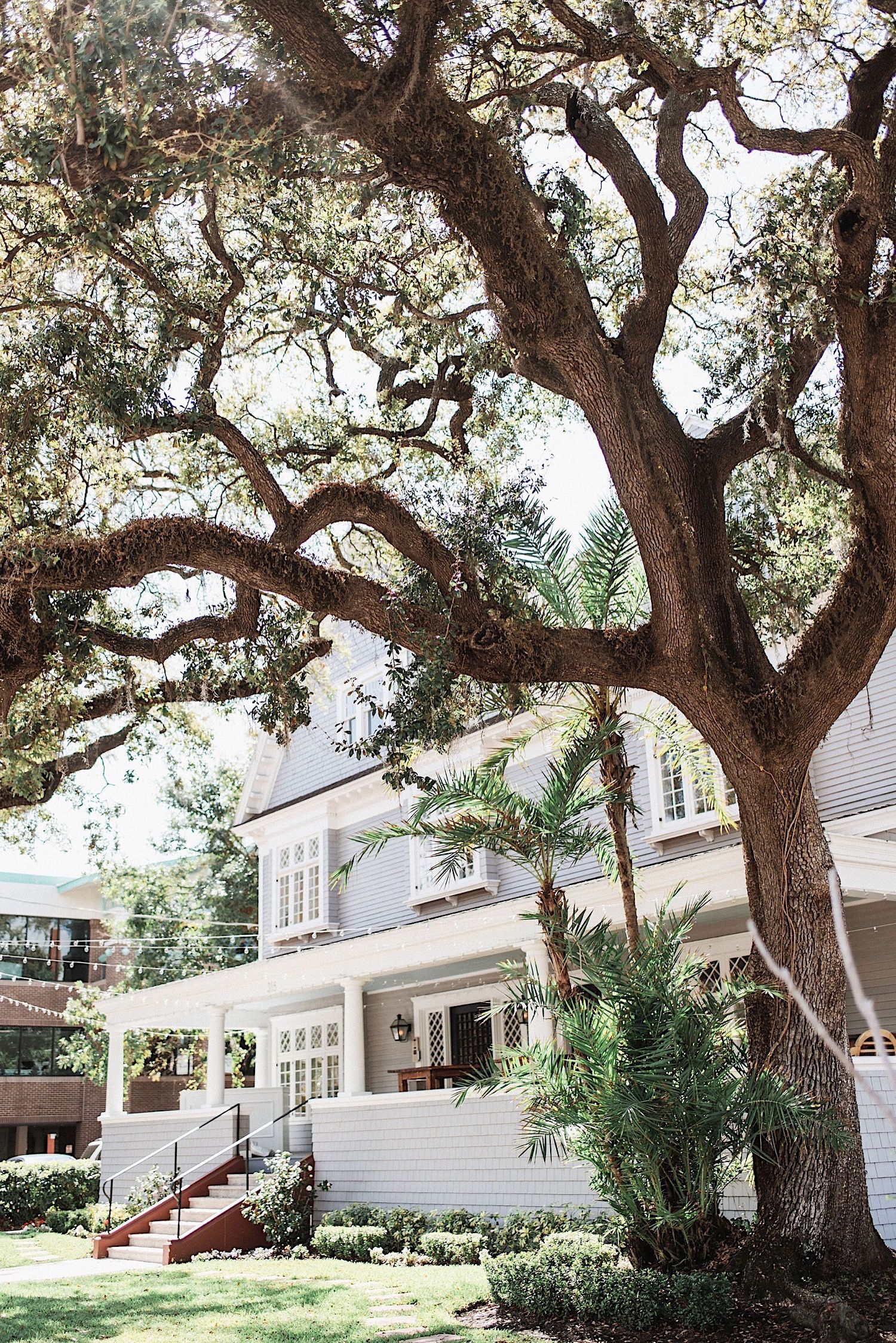 The Orlo, a historic wedding venue in Tampa, FL with a large tree in the yard
