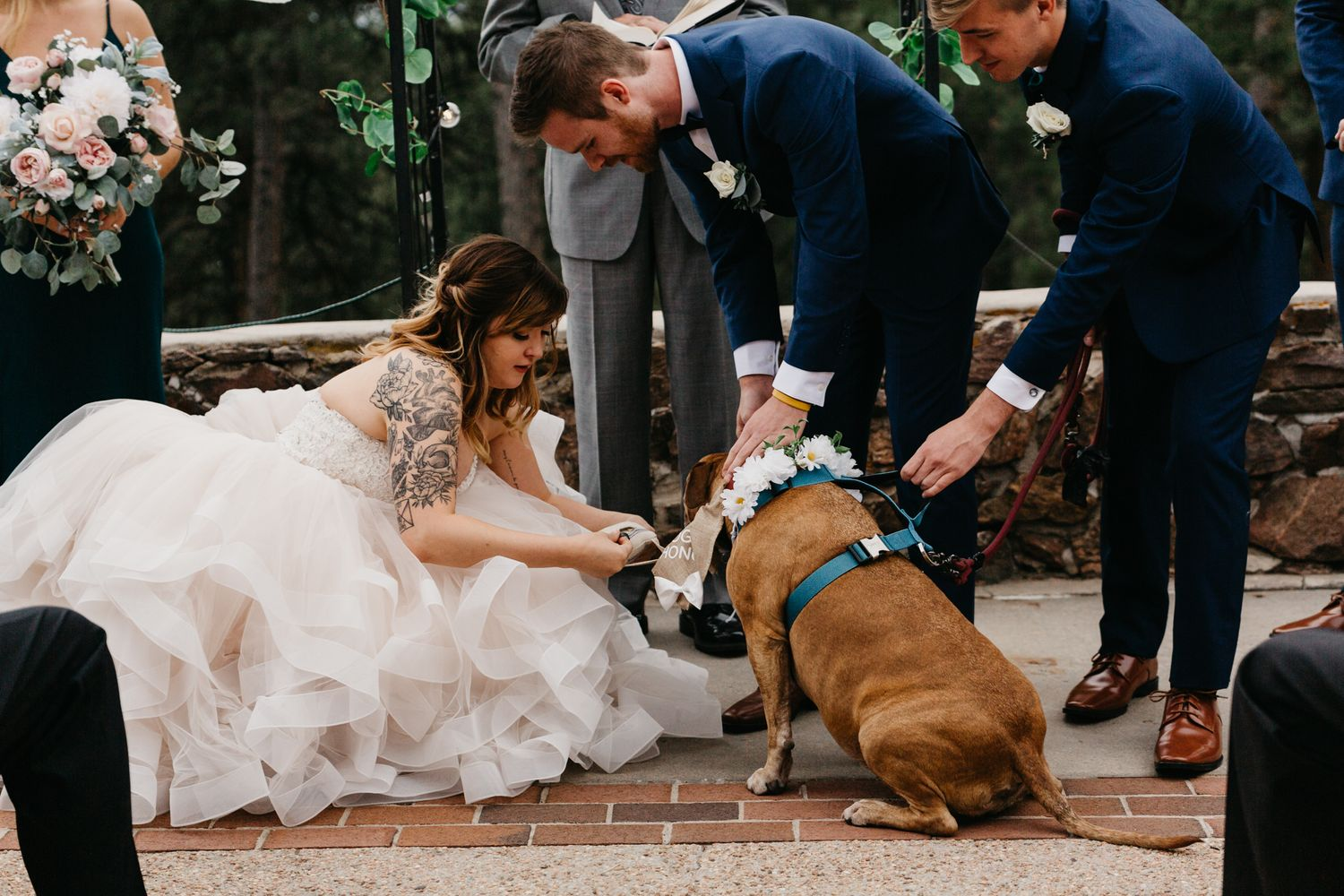 emotional portraits, dog, ceremony, colorado, mountain, wedding, golden, best colorado wedding, mansion, beautiful