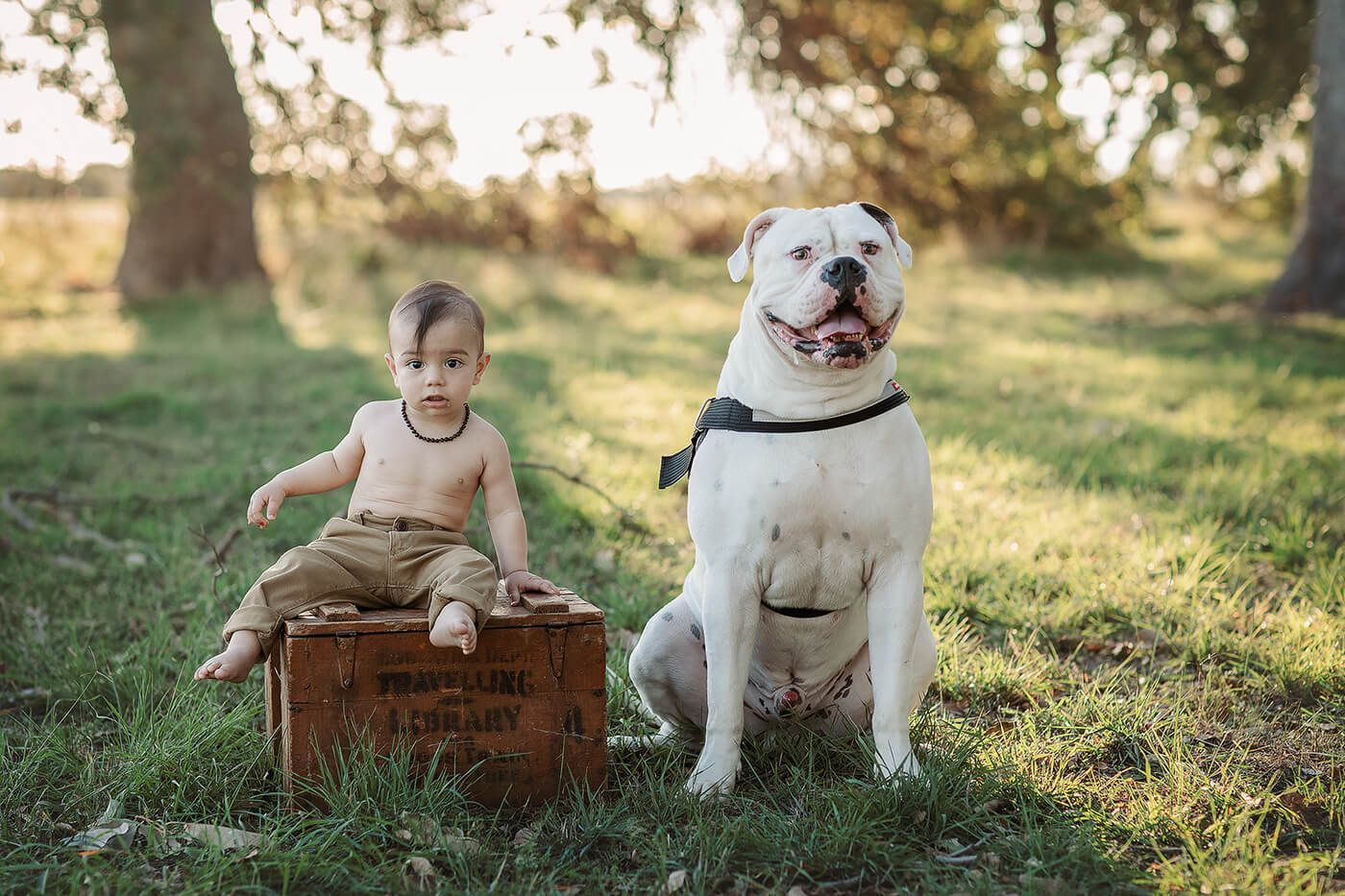 A toddler sat next to his dog at Perrys Paddock, Perth, Western Australia