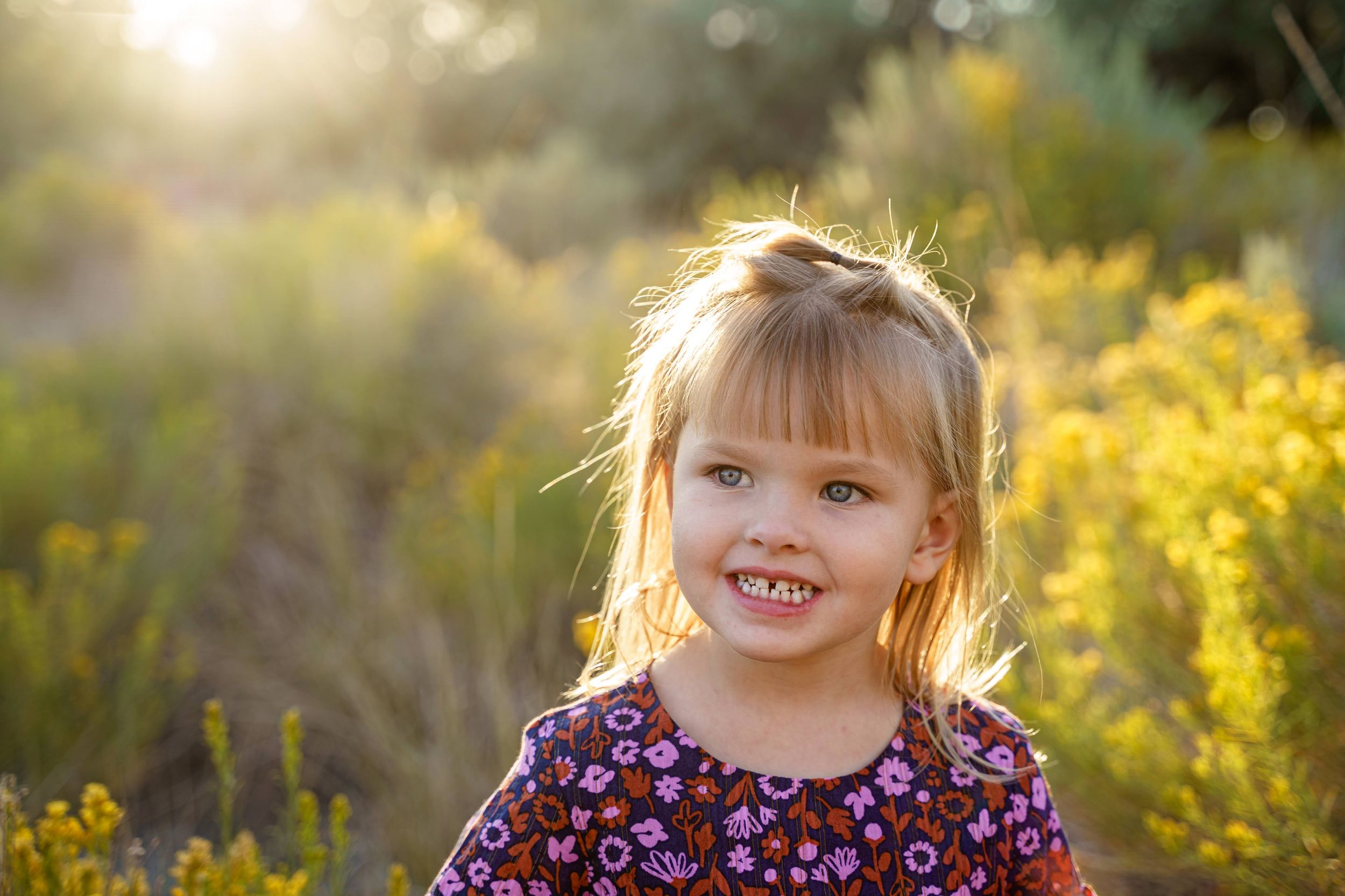 little girl in sunny field at golden hour