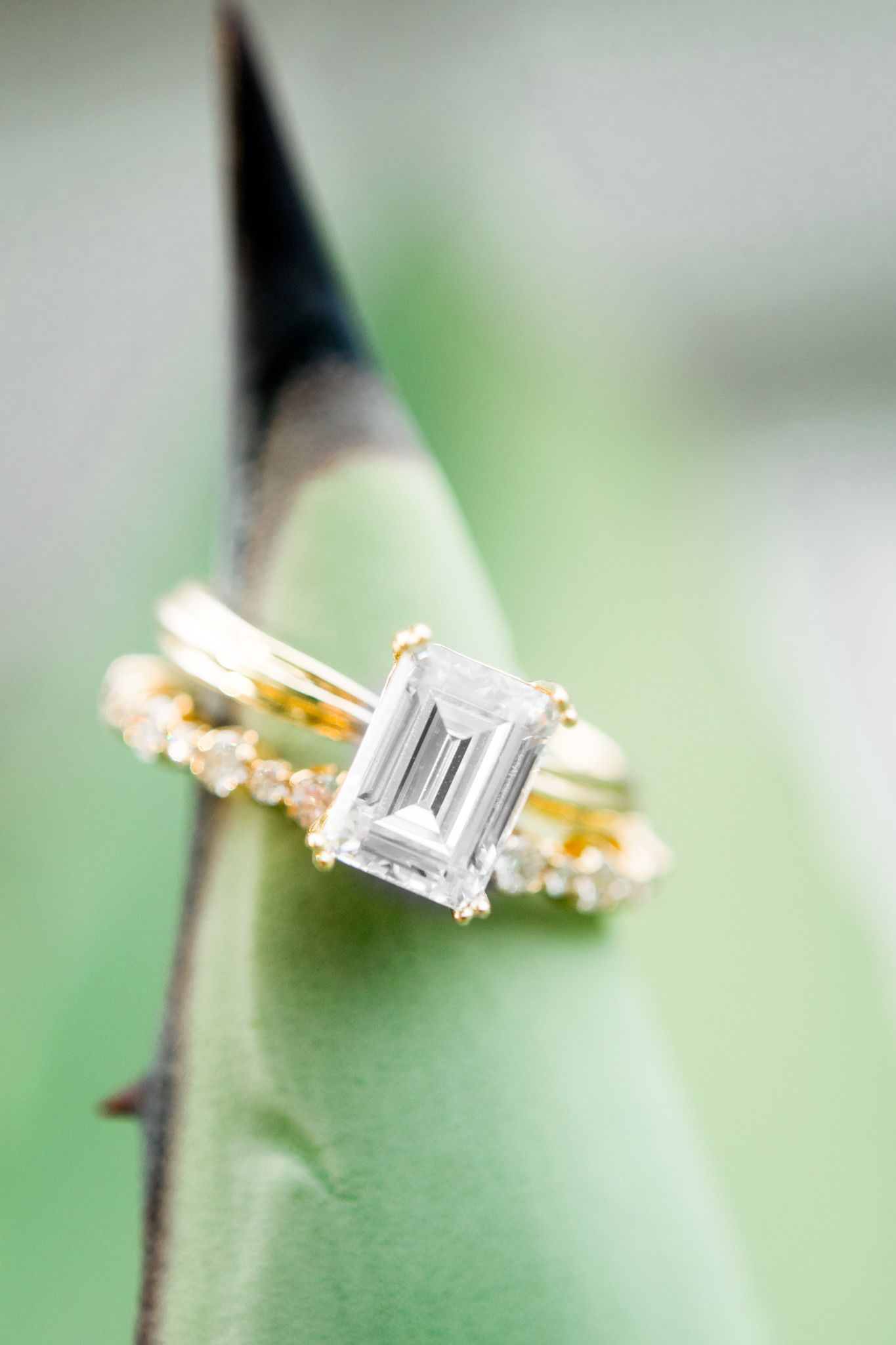 Richter and Phillips emerald cut engagement and wedding rings on tip of agave plant
