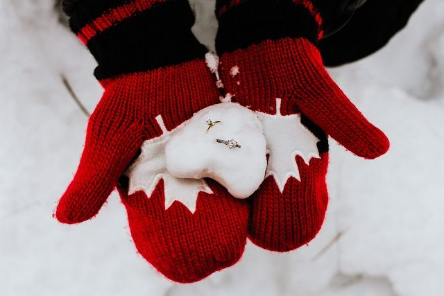 Wintery North Dundas Engagement Session