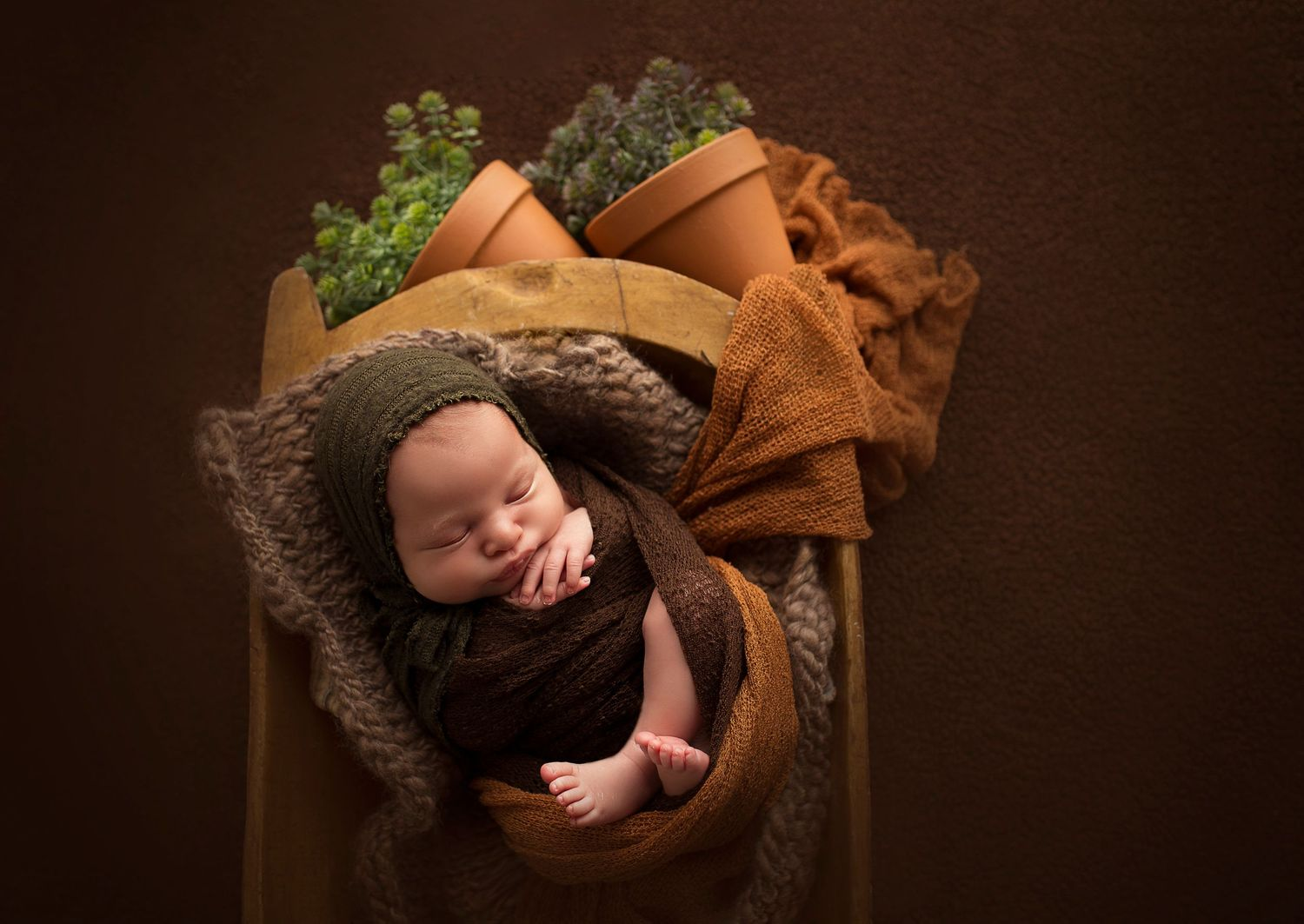 natural light photography in studio baby boy in bowl with plants