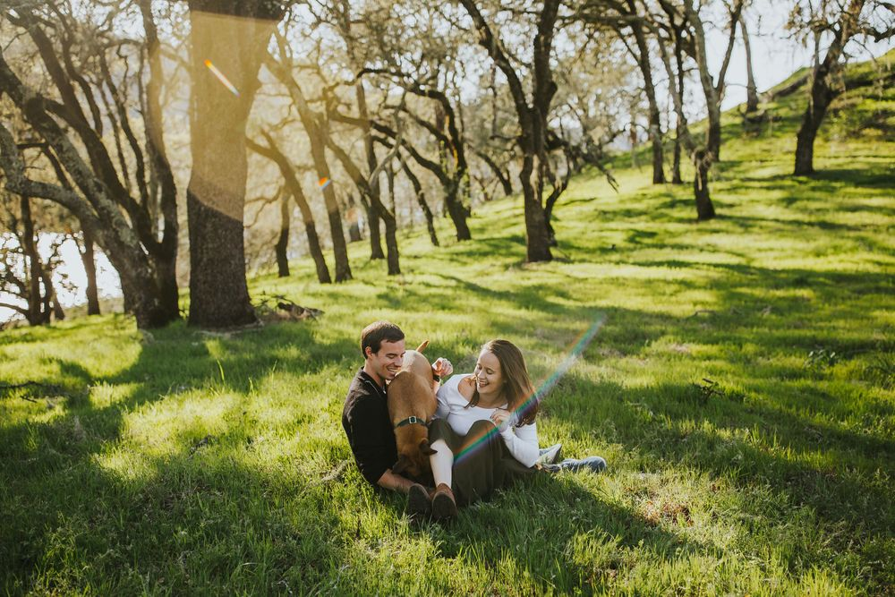 rebecca skidgel photography lake hennessey engagement shoot couple cuddling in the grass with their dog laughing