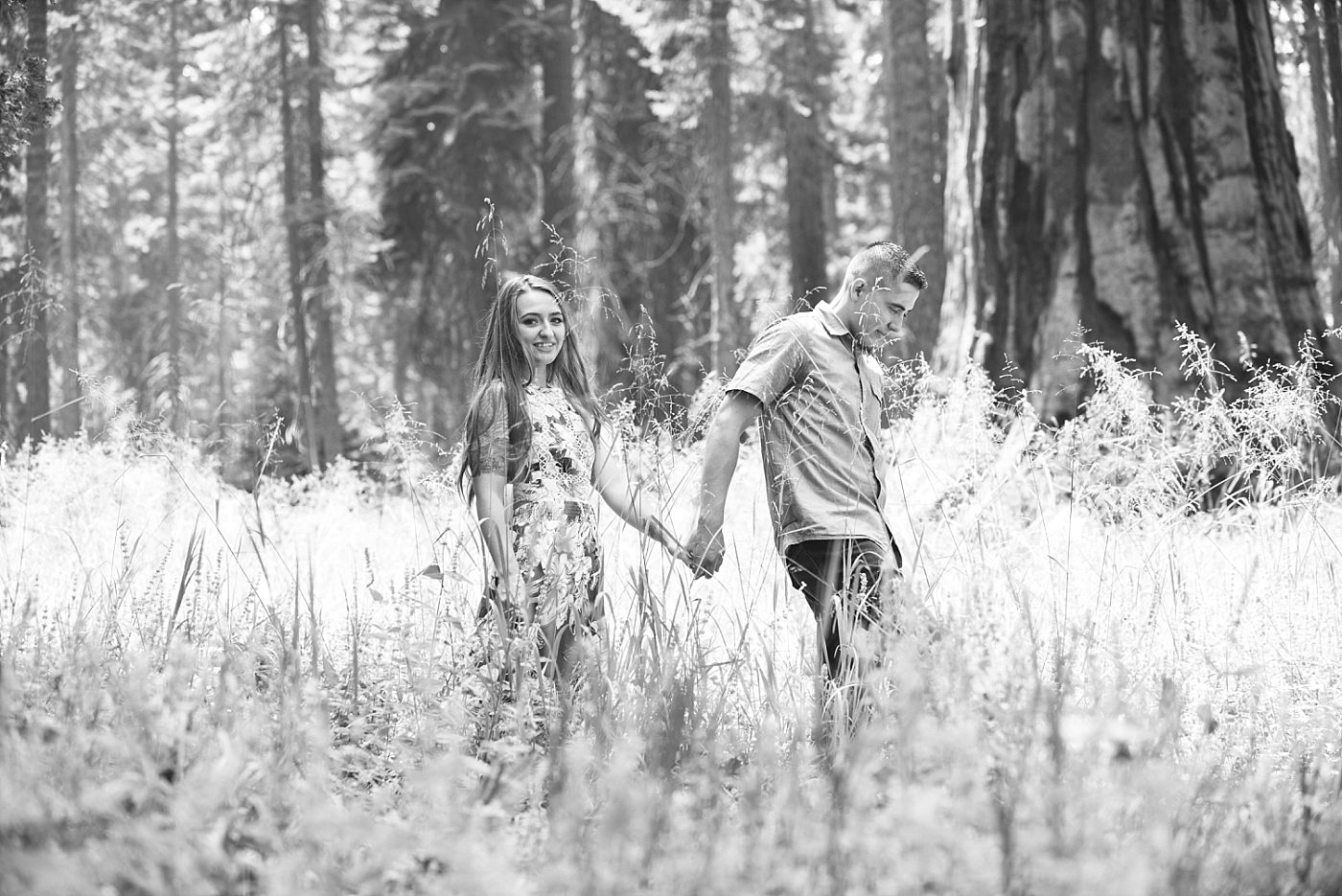sequoia national park california adventure engagement