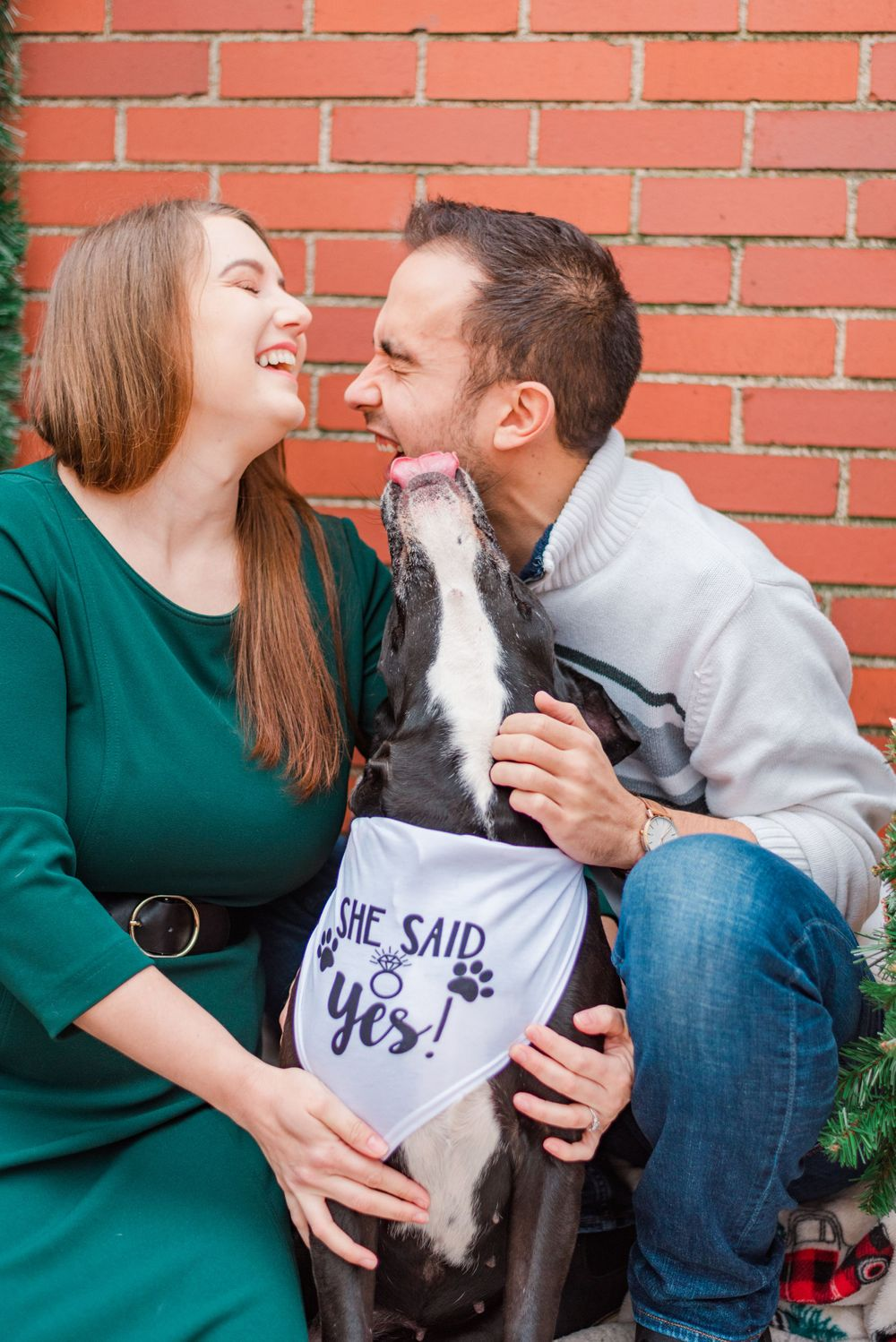 Dog with she said yes bandana in Holiday Christmas shoot with surprise proposal in Pittsburgh, Pennsylvania