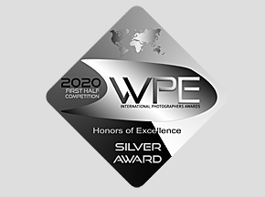 2020 WPE Honors of Excellence Award