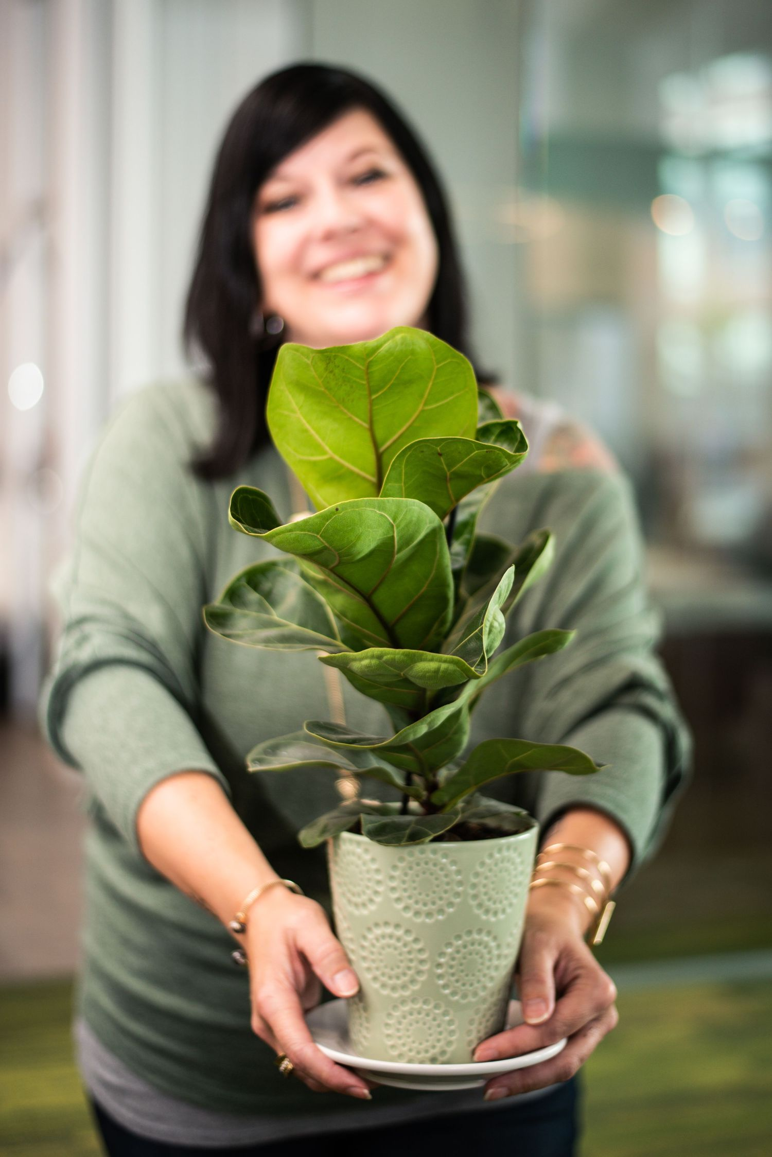 *Realtor in a Howard Hanna office with a fiddle leaf fig plant