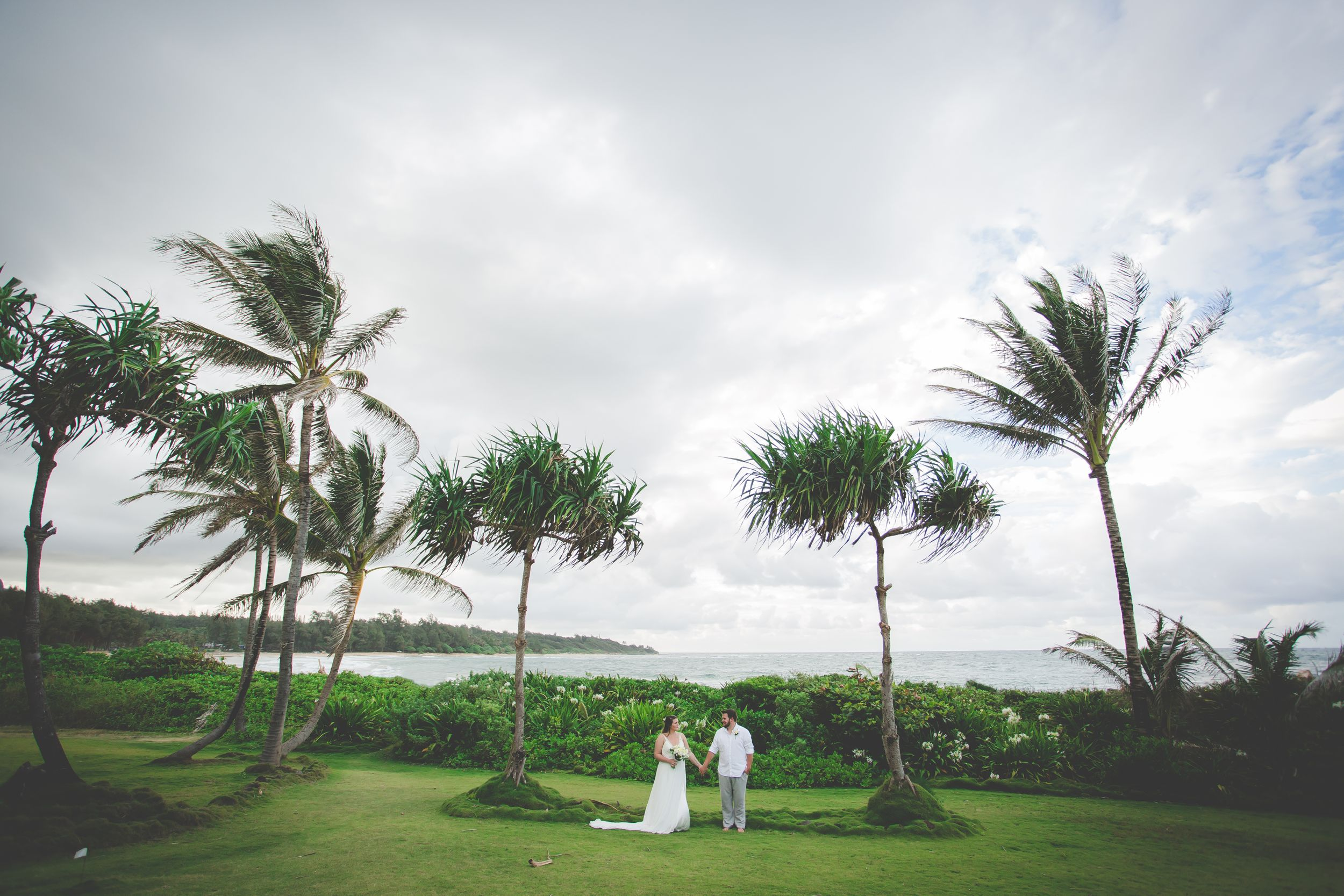 Wide photo of a bride and groom looking at each other and holding hands between palm trees. Ocean behind them,