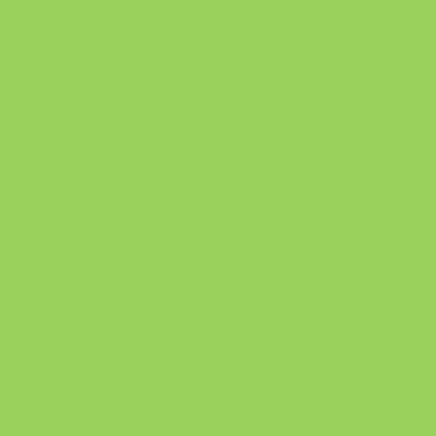 Lime Touch Album Colour Swatch