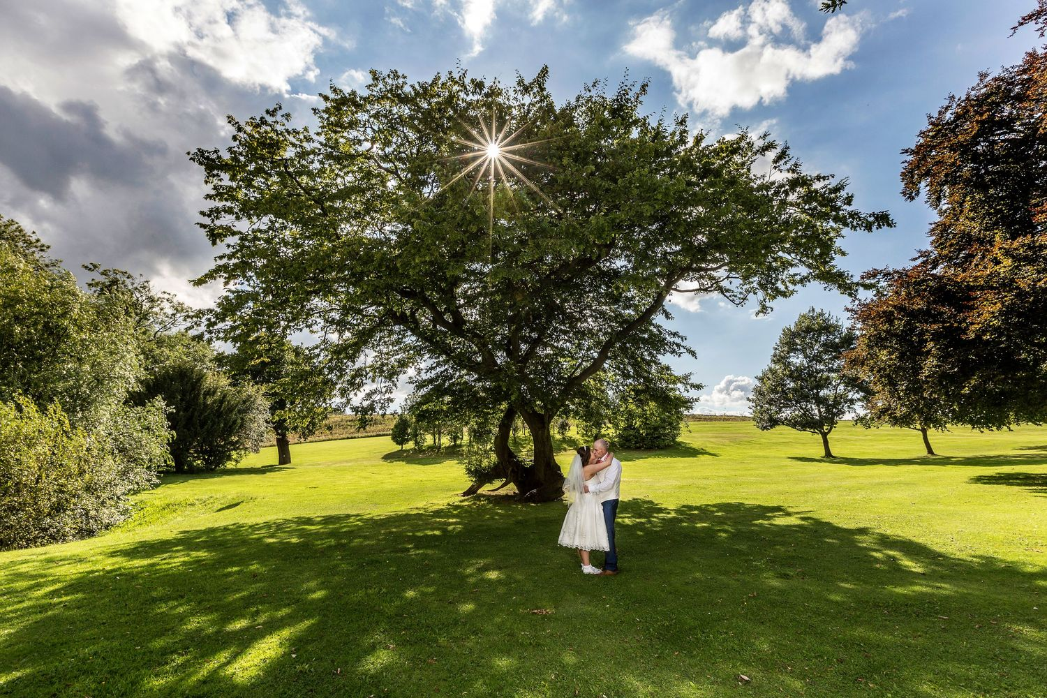 bride and groom beneath tree at eastwood hall wedding photography