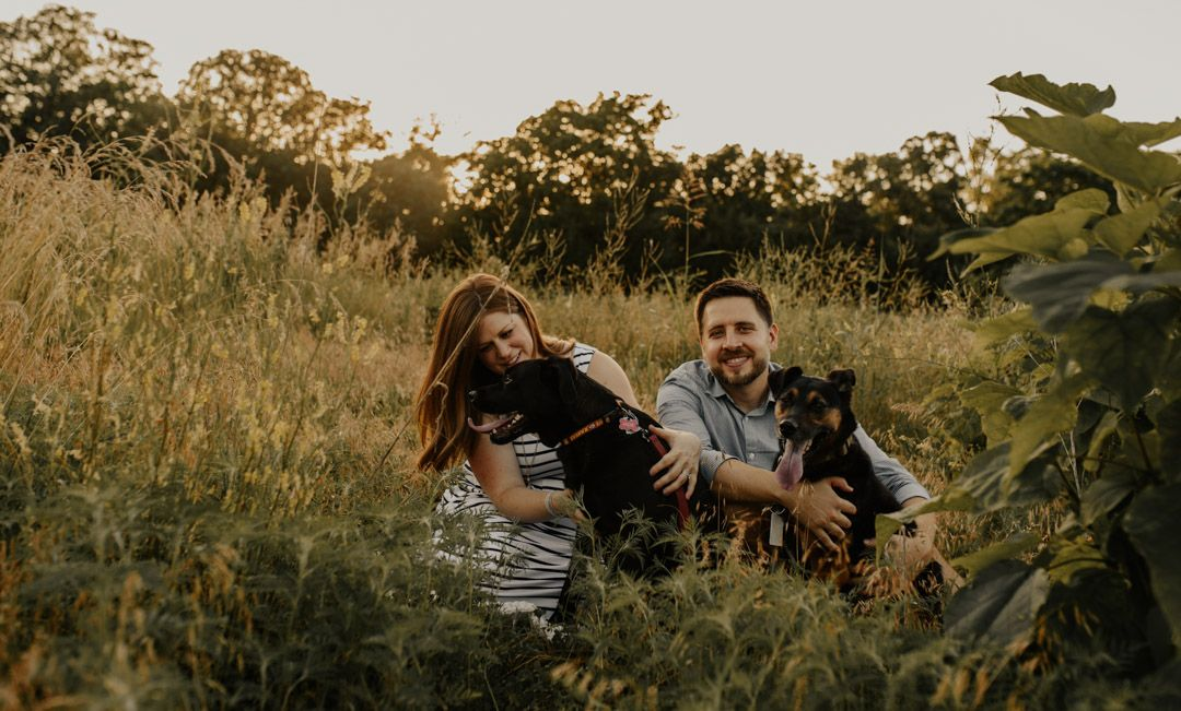 Husband and pregnant wife lounging in grassy field at sunset with two pet dogs.