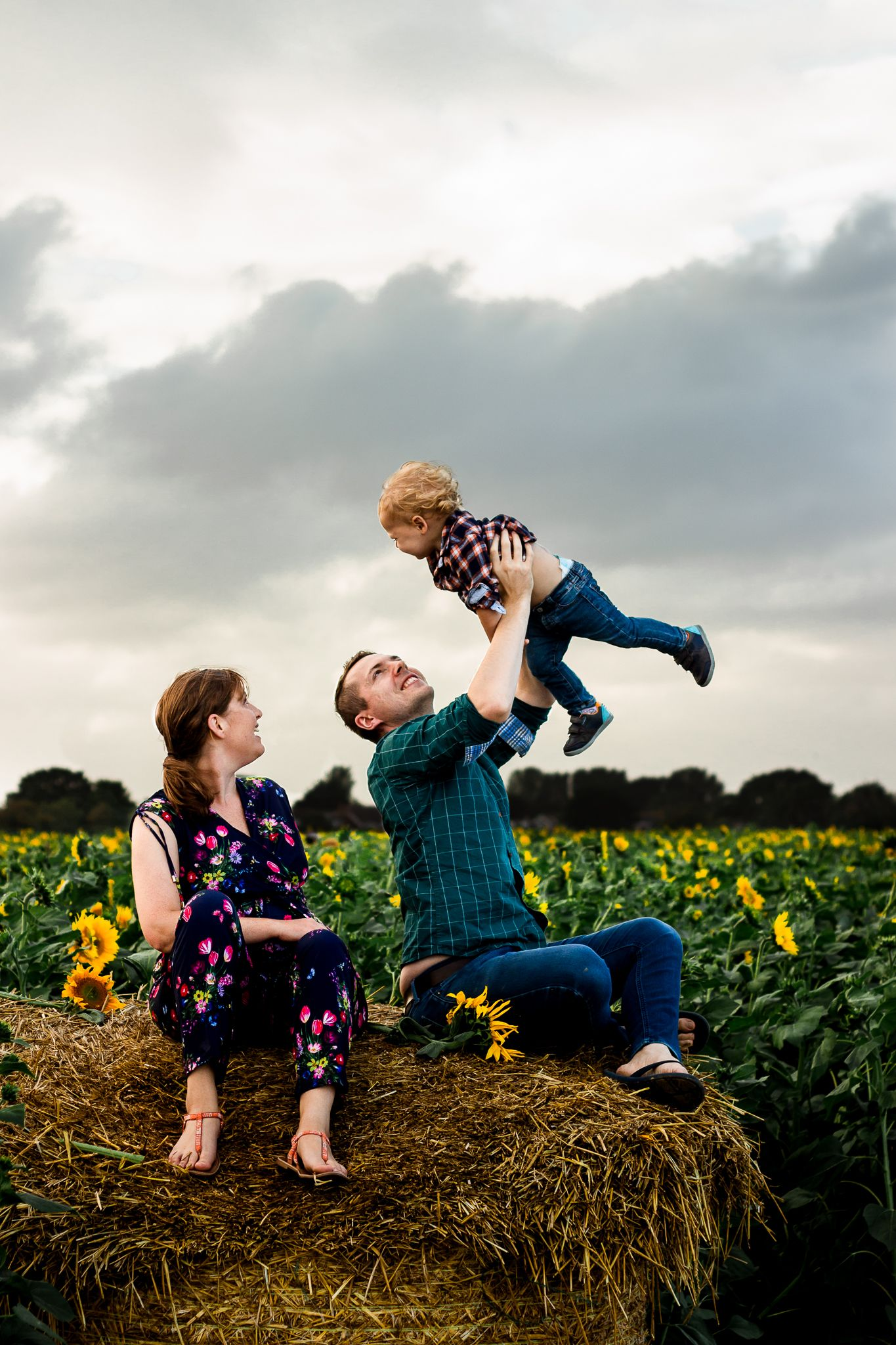 In a Sunflower field on Hayling Island a family sit on a haybale while Dad airplanes his Son into the overcast sky.