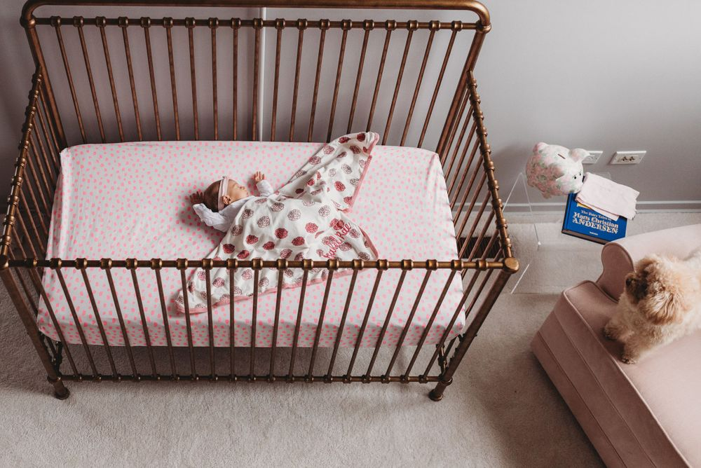 Baby girl sleeping peacefully in her crib with dog during Chicago Newborn Lifestyle Photography Session