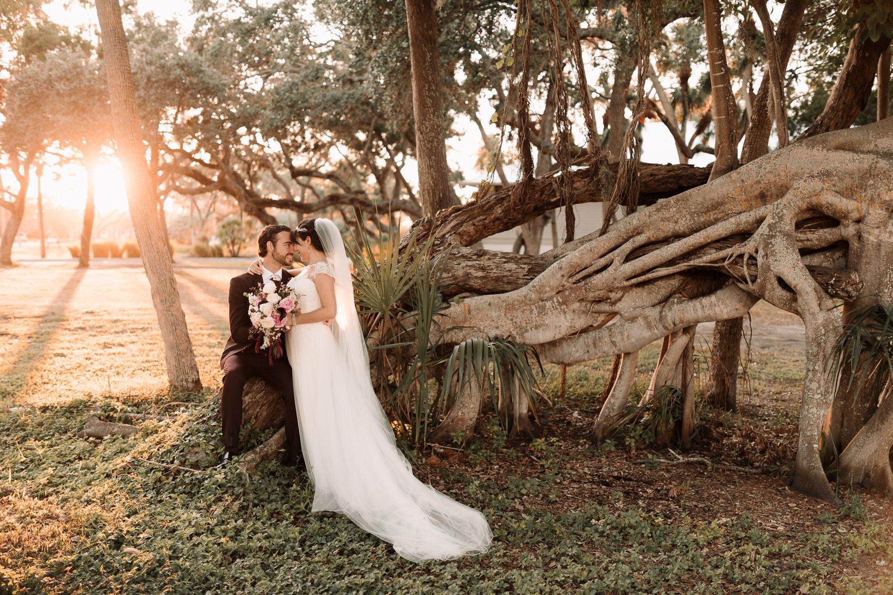 Bride and groom with banyan tree at Longboat Key Club wedding in Sarasota