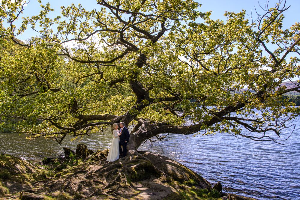 Bride and groom chat beneath gnarly tree at Rydal Water