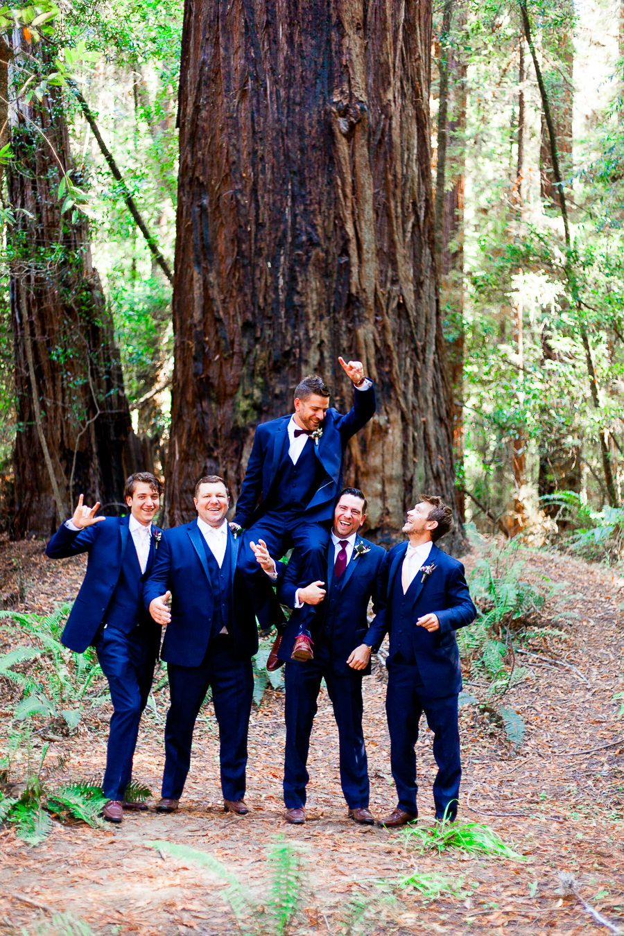 groomsmen throw groom in the air in the Redwoods at Northern California Wedding