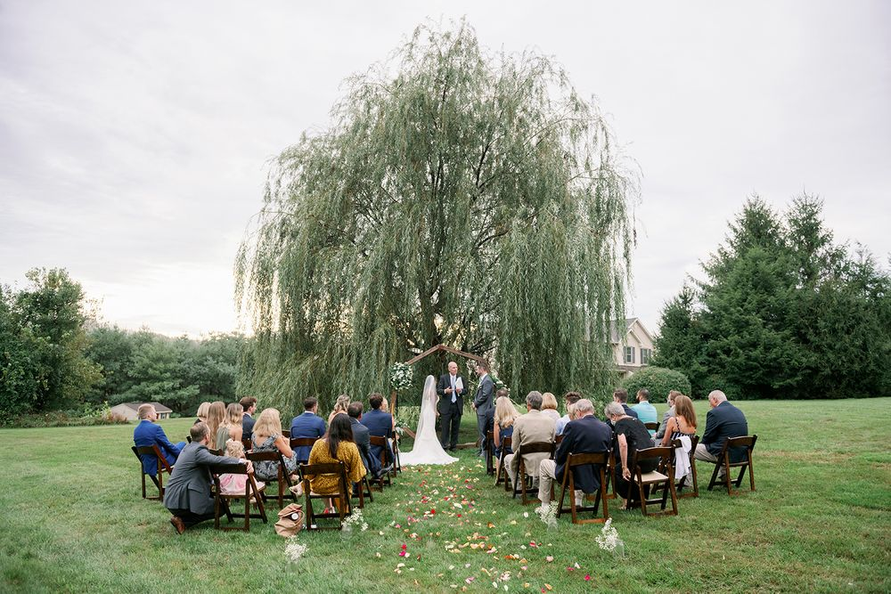 overview of backyard wedding site with willow tree