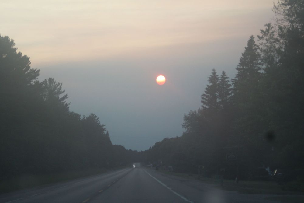 setting sun on road near forest