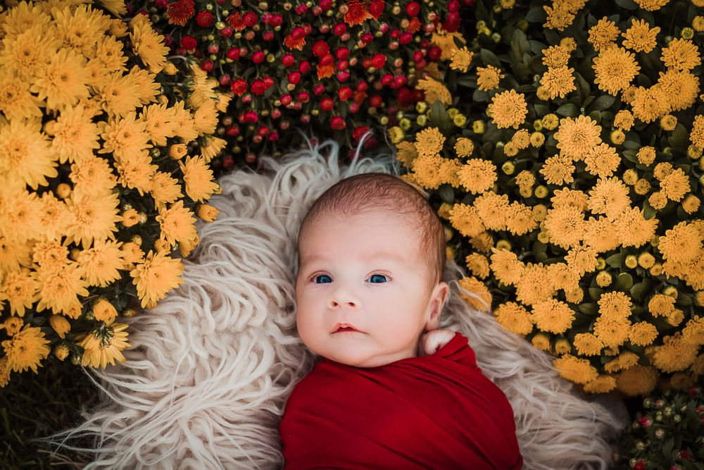 nwi boho outdoor newborn photographer
