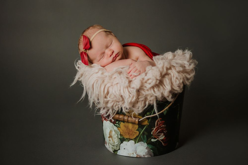 nwi studio newborn photographer
