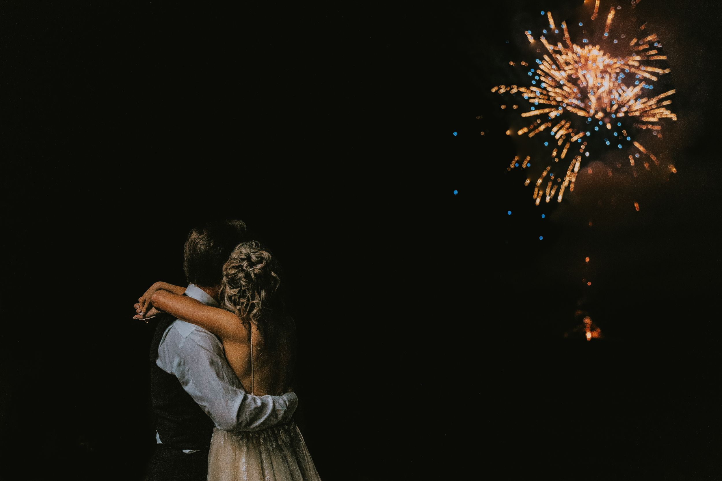 Glen Arbor Wedding Photographer Fireworks Nature Michigan Retreat