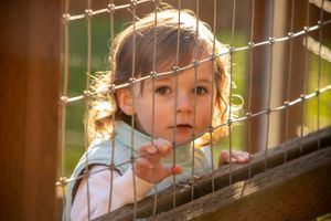 A little girl looking through a wire fence.