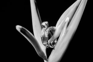 Wedding photography details shoot in Bahamas' Meliá Nassau Beach all inclusive resort