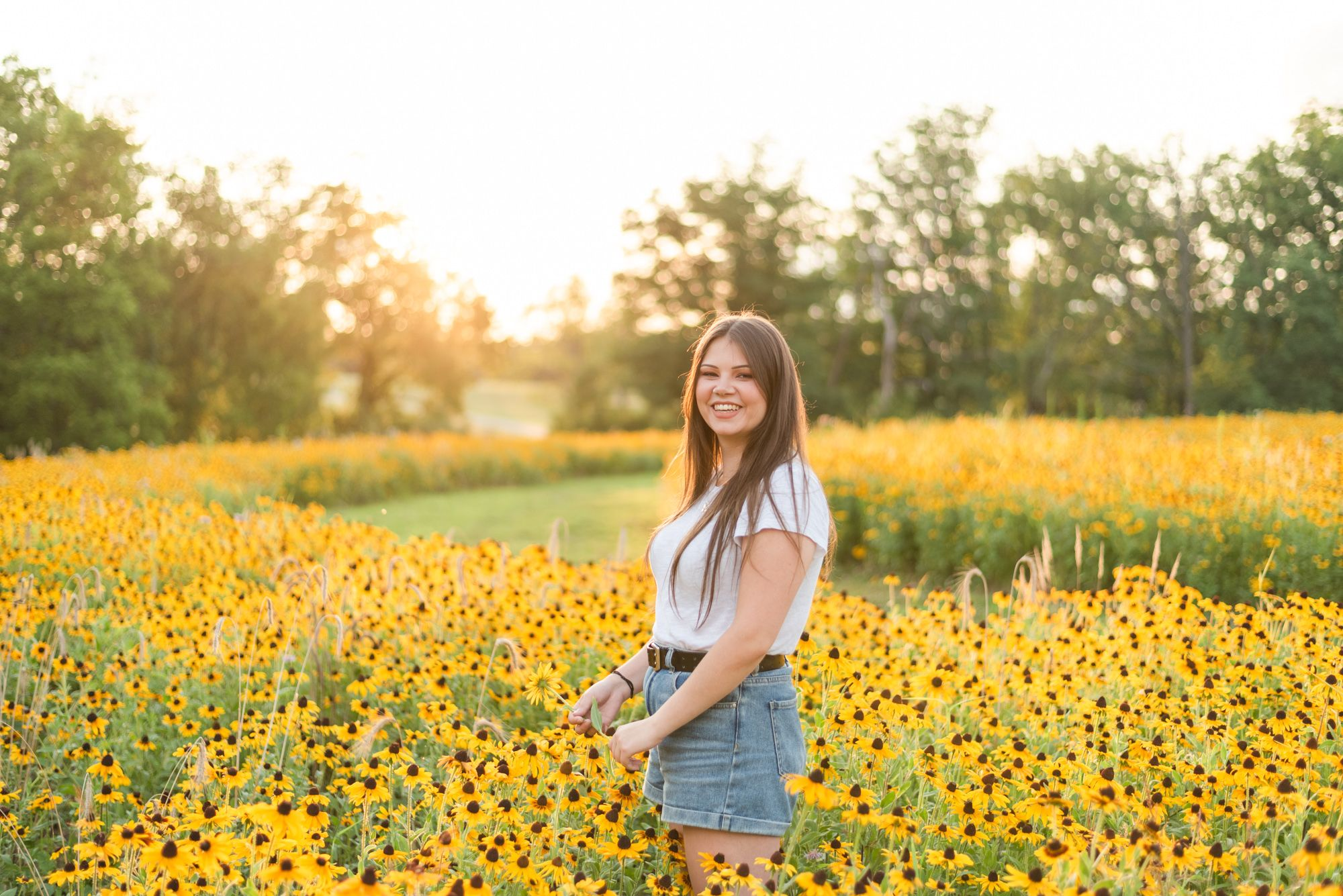 Girl standing in sunflower field in golden sunlight at Hartwood Acres in Pittsburgh Pennsylvania