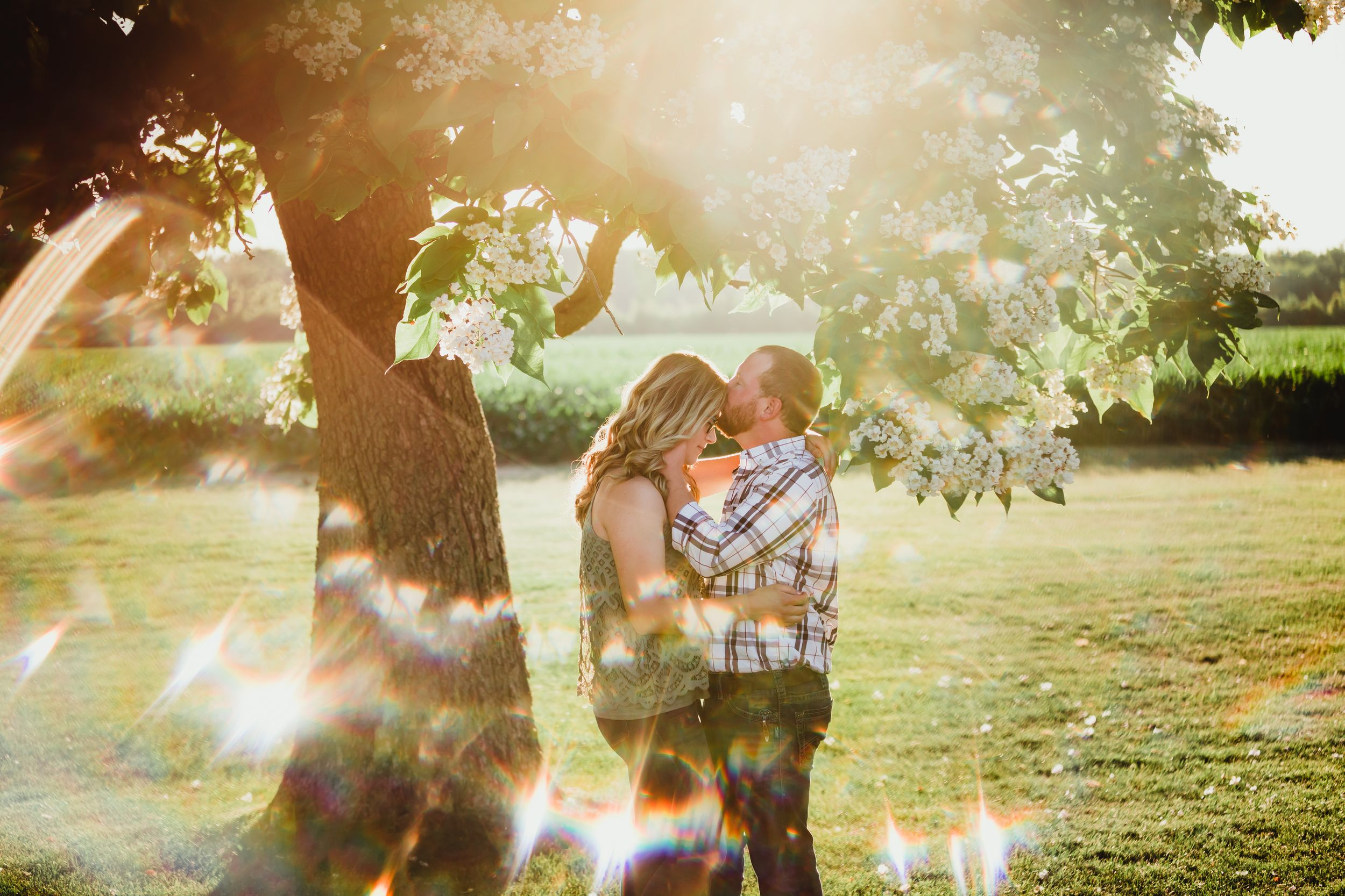 A man kissing a woman's forehead in front of a flowering tree. A prism creates bright little rainbows around them.