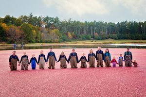 plymouth, ma family portraits | heidi harting photography