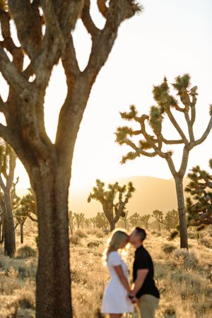 joshua tree national park sunset kiss