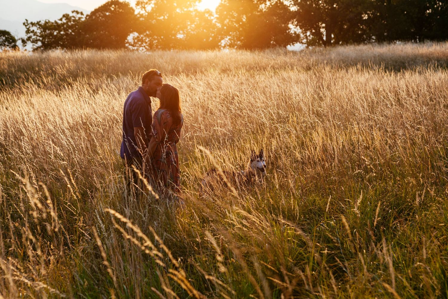 a kiss in the golden light at sunset in Italy by Tuscany based wedding photographer Elizabeth Armitage