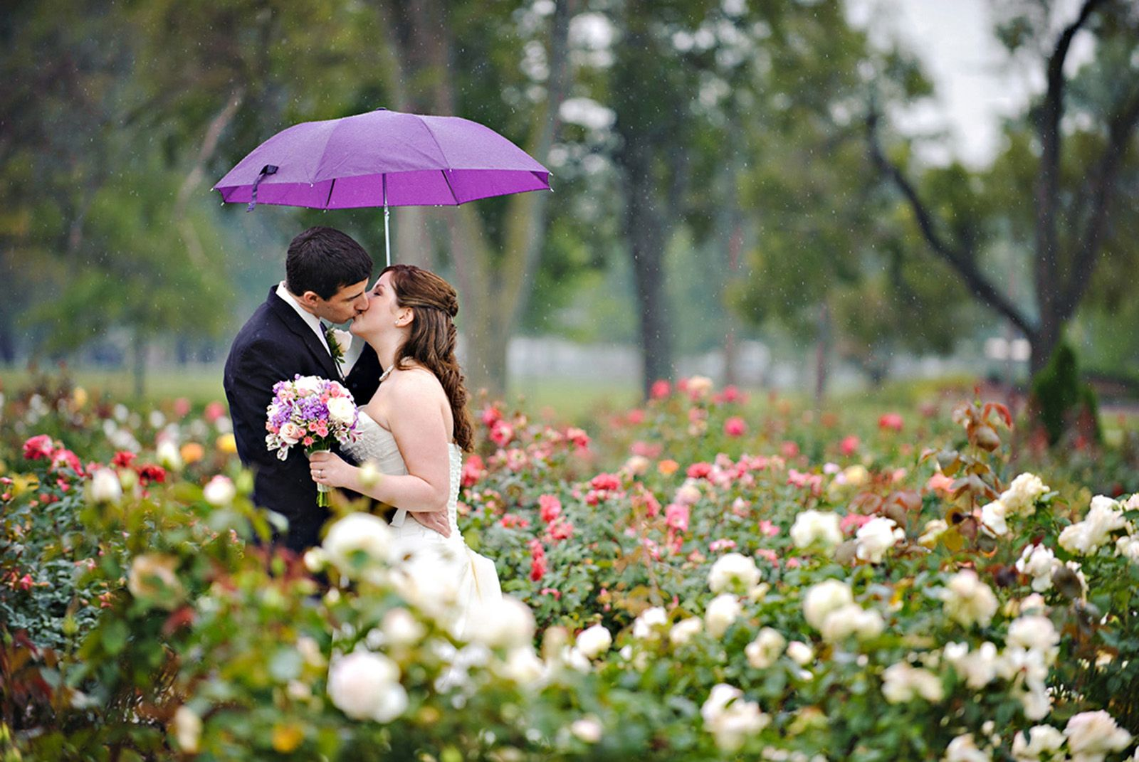 Rainy Wedding in Lorain Ohio Rose Garden