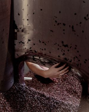 Winemaker hand scraping the inside of an open-top fermentor to pull out every last berry of grenache