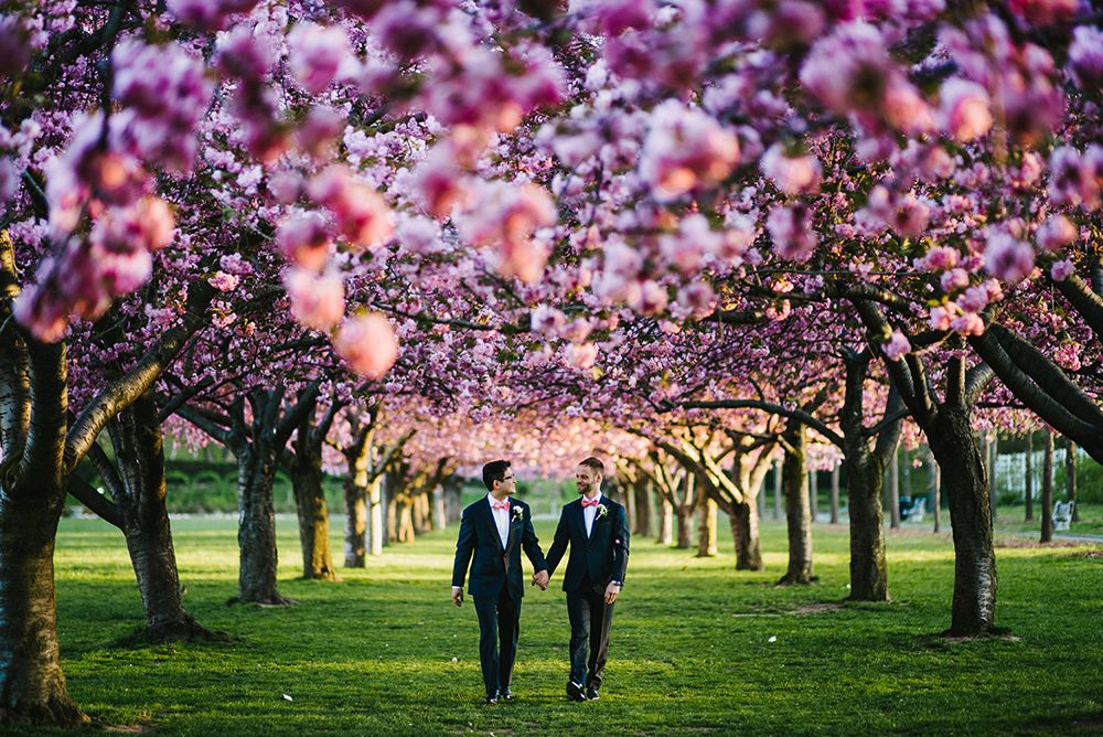 brooklyn botanical garden - wedding photos