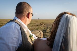 Newly married couple with a huge male lion in Masai Mara