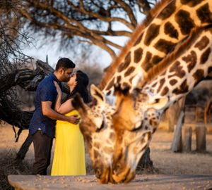 COuple kissing with giraffes in Kenya